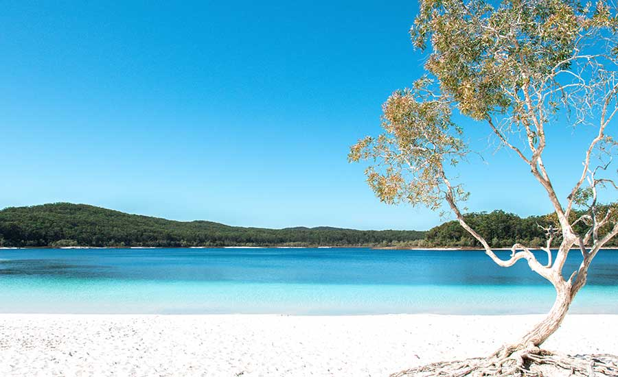 Fraser Island Meetings