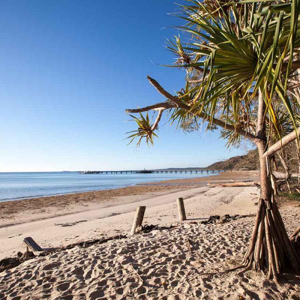 Fraser Island: Fraser Island Meetings